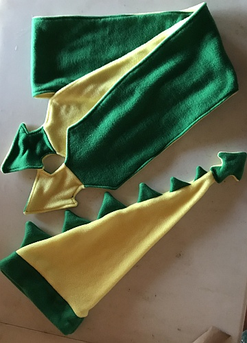 Picture of green and yellow felt dragon hat and scarf